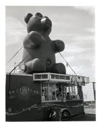 Deep Fried Gummy Bears, Salem Fair